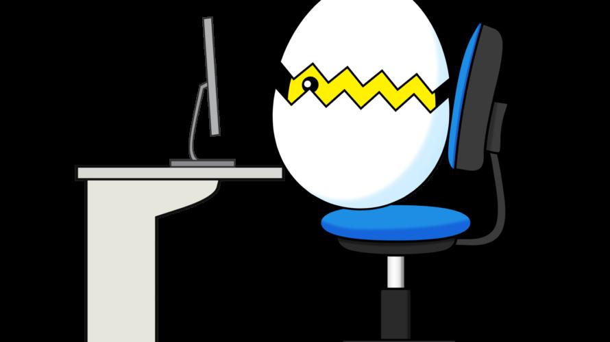 行政書士試験①:条文・判例学習はもう遅い?(10月~11月)